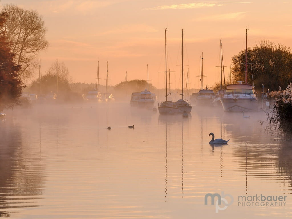 Mark Bauer Photography | PK210 Winter Morning, River Frome, Wareham