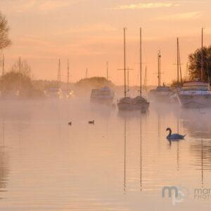 Mark Bauer Photography | PK210 Winter Morning, River Frome, Wareham