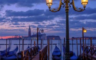 Mark Bauer Photography | Venice