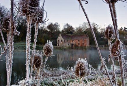 Mark Bauer Photography | First Frost, Sturminster Newton