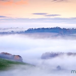 Mark Bauer Photography | Autumn mist, Hod Hill