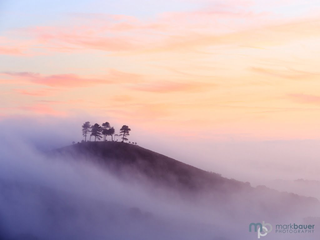 Mark Bauer Photography | Misty Dawn, Colmer's Hill
