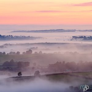 Mark Bauer Photography | Summer Sunrise from Pilsdon Pen