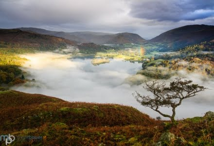 Mark Bauer Photography | Misty dawn, Grasmere, Lake District